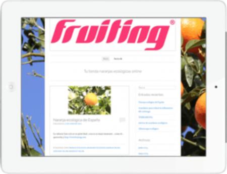 Imagen de la web de fuiting tras contratar los servicios de Web móvil y SEO